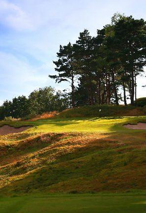 Broadstone & Remedy Oak Course 02